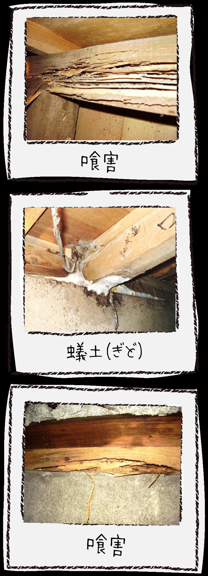 喰害・蟻土の例