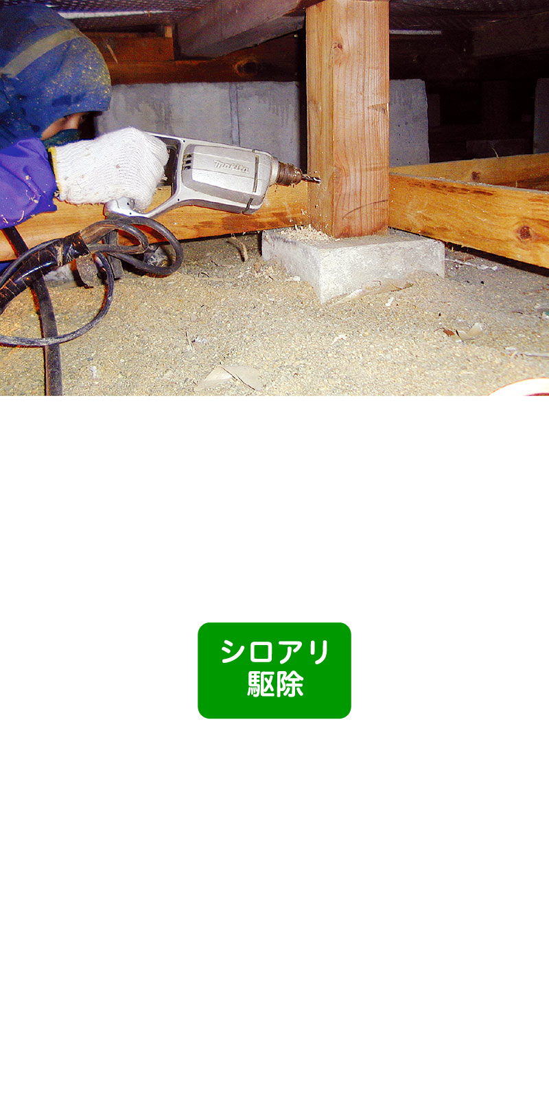 シロアリ撃退コース 79,800円(税込)